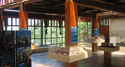 FAQ Preguntas frecuentes para visitar la ruta maya y sitios arqueológicos